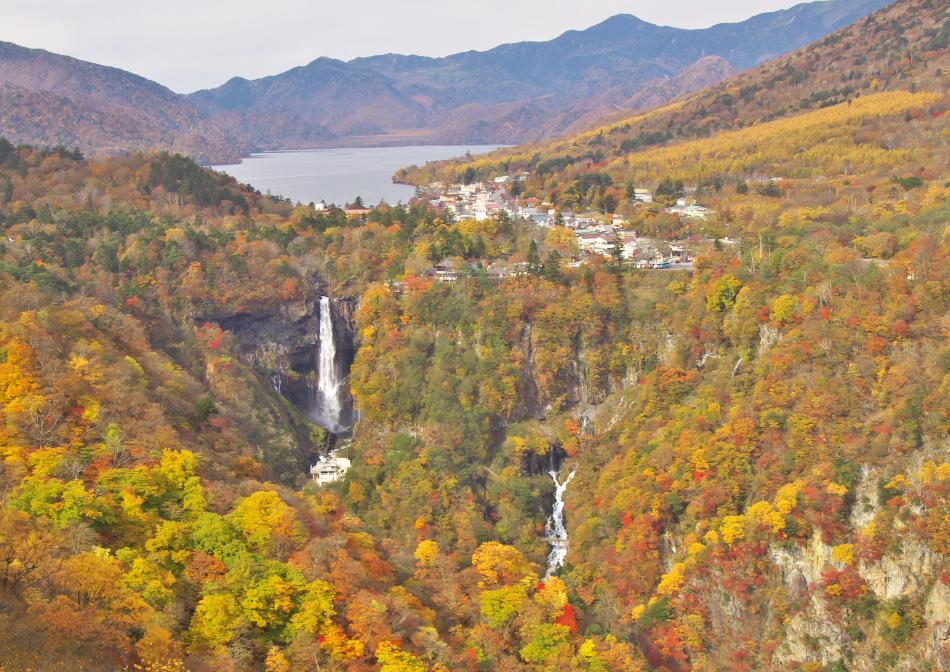 華厳の滝の紅葉は見ごろかな2012...